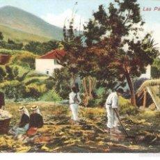 Postales: LAS PALMAS, CAMPESINOS HACIENDO LABORES, RODRIGUEZ BROS, SIN CIRCULAR. Lote 57554278