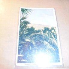 Postcards - TENERIFE - PALMERAS Y TEIDE NEVADO AL FONDO . CIRCULADA 14X9 CM. - 57768875