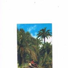 Postales: POSTAL ANTIGUA LAS PALMAS DE GRAN CANARIA SIN CIRCULAR PAISAJE TIPICO. Lote 58665873
