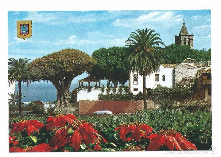ICOD DE LOS VINOS TENERIFE DRAGO MILENAIO (Postales - España - Canarias Moderna (desde 1940))