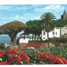 Postales: ICOD DE LOS VINOS TENERIFE DRAGO MILENAIO. Lote 58687769