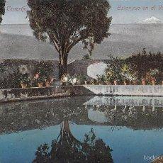 Cartoline: TENERIFE.- ESTANQUE EN EL VALLE DE OROTAVA. Lote 58783436