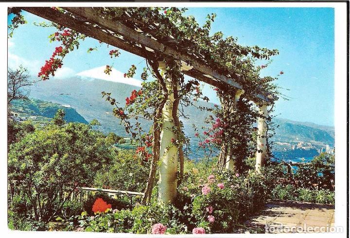 TENERIFE. POSTAL (Postales - España - Canarias Moderna (desde 1940))