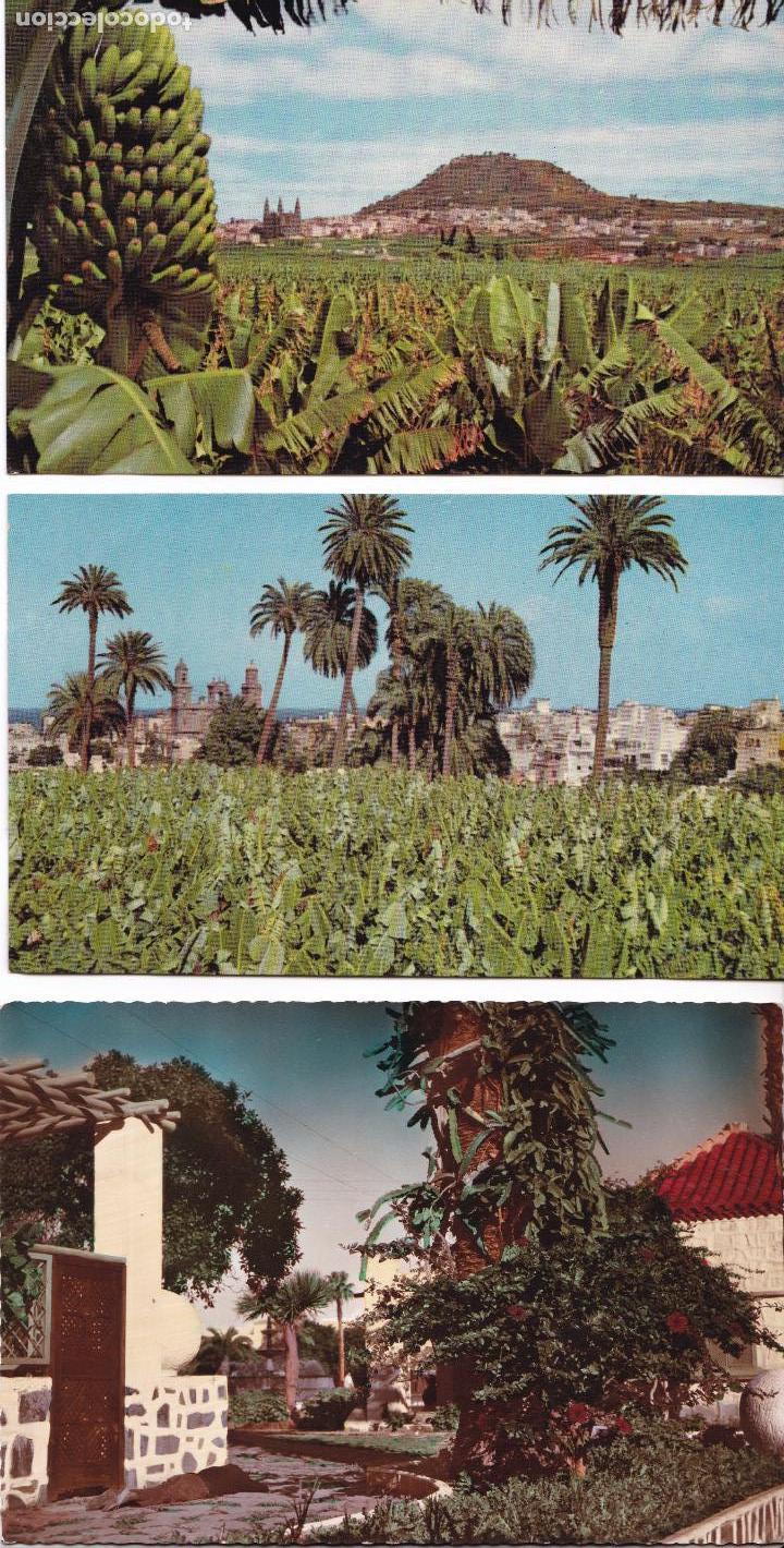 P- 6182. LOTE DE 5 POSTALES ISLAS CANARIAS. AÑO 1957. (Postales - España - Canarias Moderna (desde 1940))