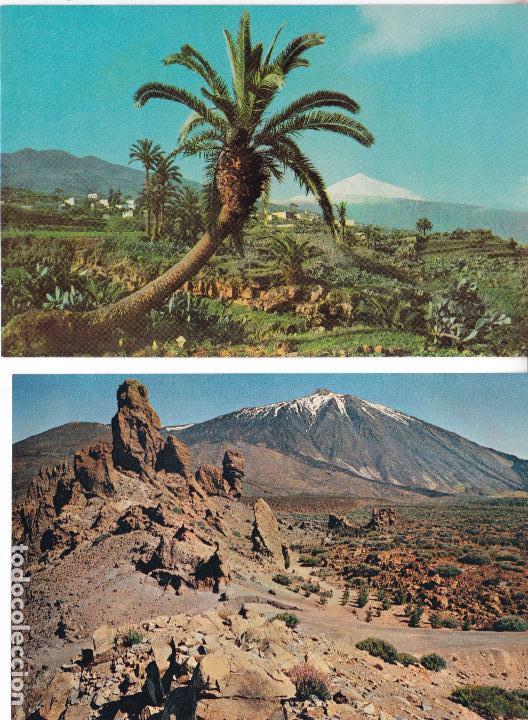 Postales: P- 6182. LOTE DE 5 POSTALES ISLAS CANARIAS. AÑO 1957. - Foto 2 - 62056580