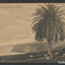 Postales: TENERIFE - CUESTA DEL NORTE - POSTAL-VER REVERSO - (44.847). Lote 62988444