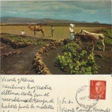 Postales: LANZAROTE ESCENAS CAMPESTRES. 1960.. Lote 64388263
