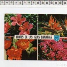 Postales: 23.480 TARJETA POSTAL, FLORES, LAS PALMAS DE GRAN CANARIA, ISLAS CANARIAS. Lote 64665667