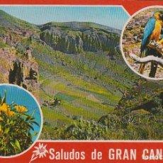 Postales: CALDERA DE BANDAMA, GRAN CANARIA. Lote 66459490