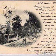 Postales: 3658 A. ALZOLA LAS PALMAS. GRAN CANARIA. CIRCULADA EL 14/11/1899 SIGLO XIX PELON. Lote 72215803