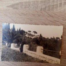 Postales: POSTAL N°135 PUERTO DE LA CRUZ ( TENERIFE ) DE EDICIONES ARRIBAS. Lote 73344619