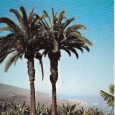 Postales: ** PN1207 - POSTAL - PUERTO DE LA CRUZ - TENERIFE - PALMERAS - GENTILEZA DE IBERIA - RF. C50. Lote 73484087