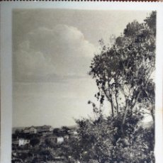 Postales: RARA EDICION, TENERIFE, (ISLAS CANARIAS), TACORONTE, HOTEL CAMACHO, SIN EDITOR. . Lote 81887396