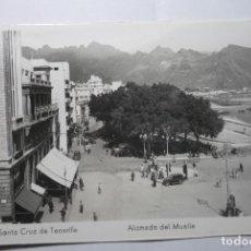 Postales: POSTAL TENERIFE.ALAMEDA DEL MUELLE-EDIC-ARRIBAS CM. Lote 85624152