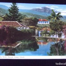 Postales: TENERIFE-V43-OUTLOOK TO THE NORTH. Lote 93898990