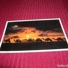 Postales: MUY BONITA POSTAL DE ISLAS CANARIAS.. Lote 96089967
