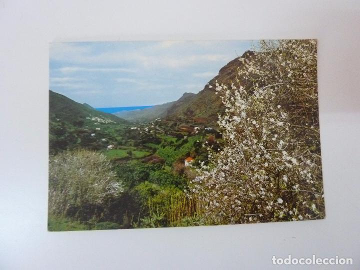 VALLE DE AGAETE. GRAN CANARIA (Postales - España - Canarias Moderna (desde 1940))