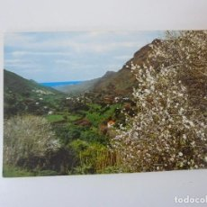 Postales: VALLE DE AGAETE. GRAN CANARIA. Lote 96334227