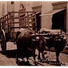 Postales: POSTAL LAS PALMAS. LAS PALMAS DE GRAN CANARIAS. BULLOCK WAGGON. YUNTA DE BUEYES. Lote 96579423