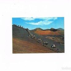 Postales: POSTAL ANTIGUA CANARIAS SIN CIRCULAR LANZAROTE CARAVANA DE CAMELLOS. Lote 98065967