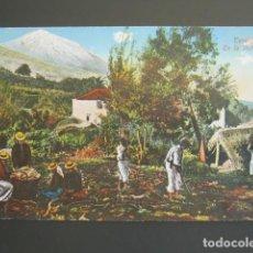 Cartoline: POSTAL TENERIFE. EN LA VICTORIA. . Lote 99357471