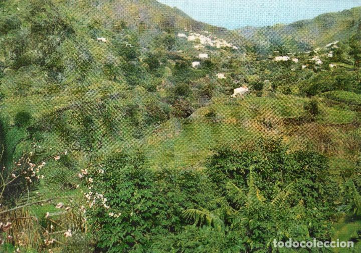 LAS PALMAS DE GRAN CANARIA . VALLE DE AGAETE .FRANROJA (Postales - España - Canarias Moderna (desde 1940))