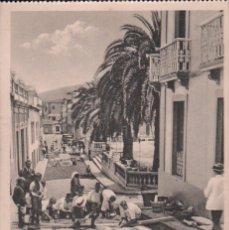 Postales: POSTAL TENERIFE . VILLA OROTAVA ALFOMBRAS P.MUNDI/CANARIAS-005 , BUEN ESTADO. Lote 100576407