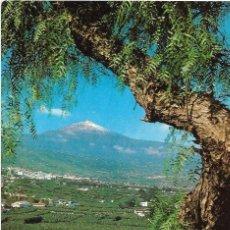 Postales: == A1488 - POSTAL - TENERIFE - VALLE DE LA OROTAVA - EL TEIDE. Lote 101951279