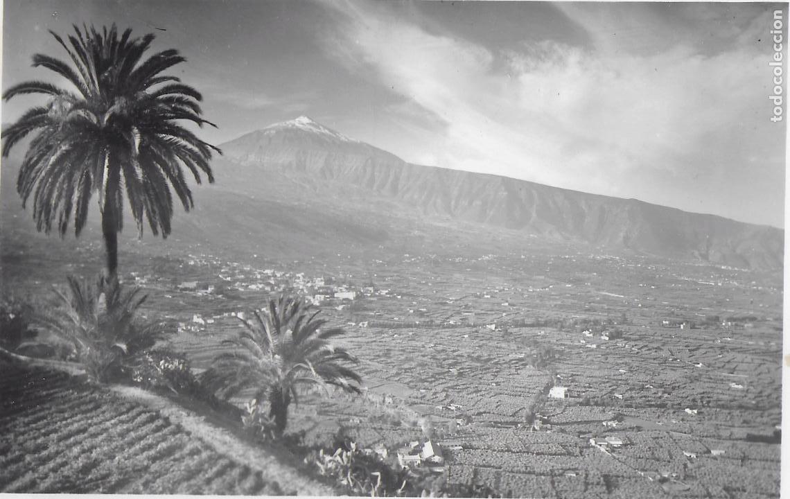 P- 7768. POSTAL TENERIFE. (Postales - España - Canarias Moderna (desde 1940))