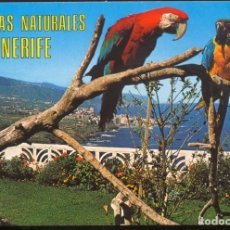 Postales: BELLEZAS NATURALES DE TENERIFE. Lote 103305747