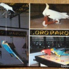 Postales: LORO PARQUE - PUERTO DE LA CRUZ - TENERIFE. Lote 105017771