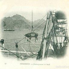 Postales: BUQUE ESCUELA FRANCES DUGUAY TROUIN.CAMPAÑA 1902-03.PUERTO TENERIFE .EMBARQUE DE BUEYES. Lote 105752771