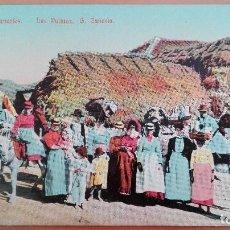 Postales: POSTAL TIPOS CANARIOS LAS PALMAS GRAN CANARIA - COLOR PERFECTA CONSERVACION COSTUMBRISMO. Lote 105798875