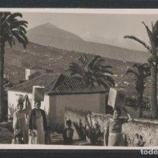 Postales: TENERIFE - FOTO F. BAENA - P23976. Lote 105831355