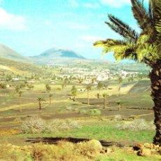 Postales: HARIA - LANZAROTE -VALLE DE LAS PALMERAS- (EX. COMERCIAL SILVA Nº 20.026) SIN CIRCULAR / P-985. Lote 98374511