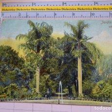 Postales: POSTAL DE TENERIFE. SIGLO XIX - 1905. JARDÍN BOTÁNICO EN OROTAVA. 7857. 293. Lote 112616127