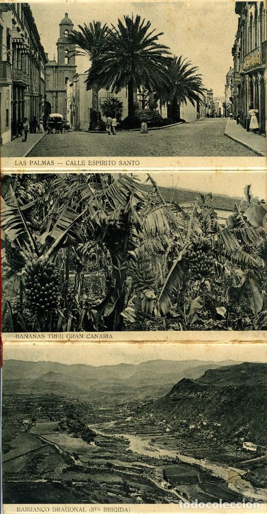Postales: LAS PALMAS. ALBUM-ESTUCHE CON 12 POSTALES SIGLO XIX FORMANDO ACORDEÓN. EDICION J. PERESTRELLO. VER.. - Foto 4 - 115244803