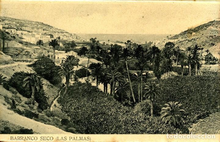 Postales: LAS PALMAS. ALBUM-ESTUCHE CON 12 POSTALES SIGLO XIX FORMANDO ACORDEÓN. EDICION J. PERESTRELLO. VER.. - Foto 7 - 115244803