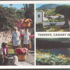 Postales: TENERIFE - CANARY ISLANDS - . Lote 115290743