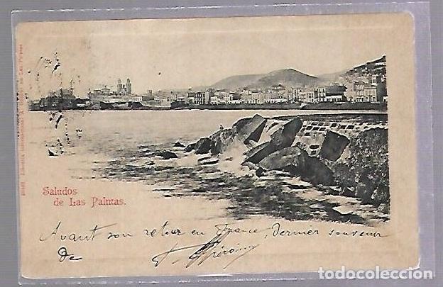 TARJETA POSTAL. SALUDOS DE LAS PALMAS. LIBRERIA GERBER. 50462. (Postales - España - Canarias Antigua (hasta 1939))