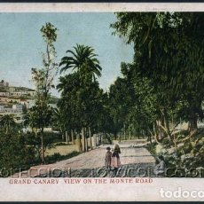 Postales: POSTAL GRAN CANARIA CAMINO DEL MONTE GRAND CANARY VIEW ON THE MONTE ROAD CA AÑO 1900. Lote 115924483