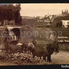 Postales: ARUCAS CARRUAJE CABALLOS LAS PALMAS TARJETA POSTAL FOTOGRAFICA CA1900 ED. JUAN BONNET. Lote 117538911
