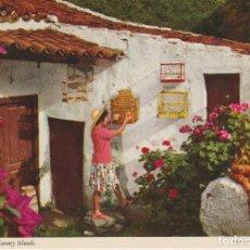 Postales: (38) ISLAS CANARIAS. CUIDADO DEL CANARIO. Lote 121165515