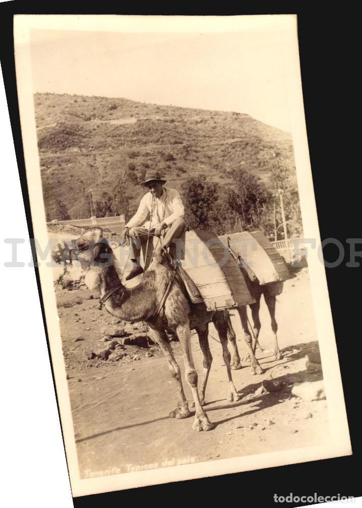 Postales: TENERIFE ISLAS CANARIAS 4 TARJETAS POSTALES CA1900 TIPO FOTOGRAFIA - Foto 4 - 121914907