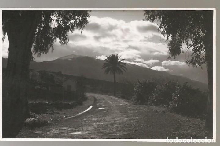 FOTOGRAFÍA ORIGINAL CANARIAS , AL DORSO PONE: LOS LLANOS DE AXIDADES 1954 (LA PALMA) (Postales - España - Canarias Antigua (hasta 1939))