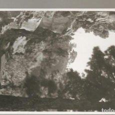 Postales: FOTOGRAFÍA ORIGINAL CANARIAS , AL DORSO PONE: CAMINO DE LAS TRICIAS (LA PALMA). Lote 125424459