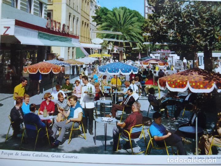 POSTAL. PARQUE DE SANTA CATALINA. ED. BENITEZ HERMANOS. SIN CIRCULAR. (Postales - España - Canarias Moderna (desde 1940))