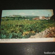 Postales: GUIA GRAN CANARIA UN PLATANAL. Lote 128671607