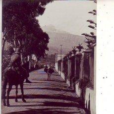 Cartoline: CAMINO DE LA OROTAVA - TENERIFE. Lote 132351106