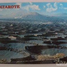 Postales: POSTAL. 2977. ISLAS CANARIAS. LA GERIA DE LOS VINOS. LANZAROTE. CULTIVOS DE VIÑEDOS. COLECCIÓN PERLA. Lote 136739482